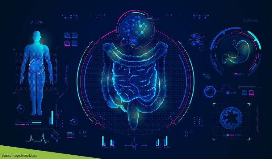 Berbagai Macam Fakta Unik Sistem Pencernaan