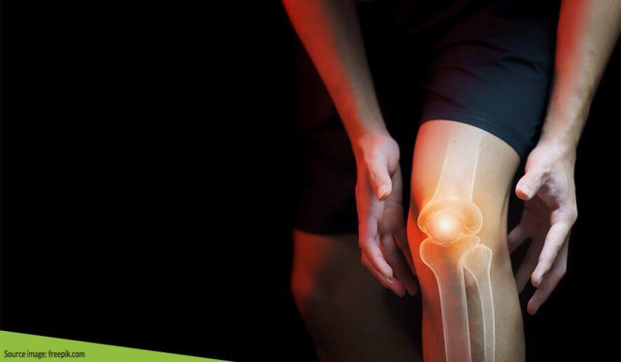 Mengenal Fakta Unik Sendi & Tulang Pada Tubuh Manusia